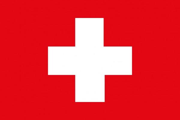 Schweizer Flagge 20x30cm