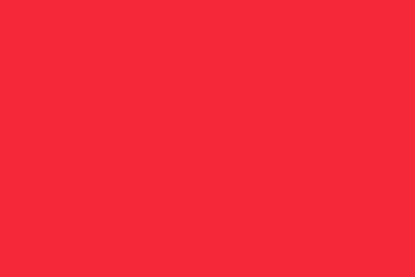 Rote Signal Flagge 30x45cm