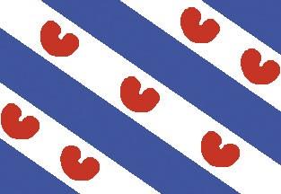 Friesische Flagge 20x30cm