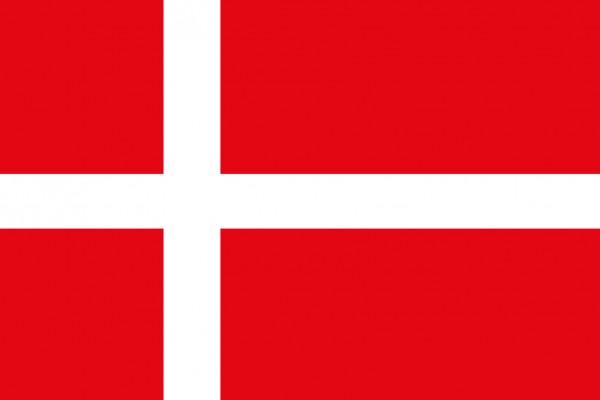 Dänische Flagge 20x30cm