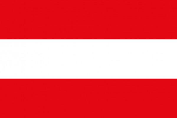 Österreichische Flagge 20x30cm