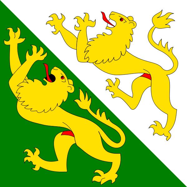 Thurgau Flagge 20x30cm