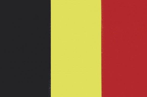 Belgische Flagge 30x45cm