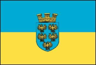 Niederösterreich Flagge 20x30cm