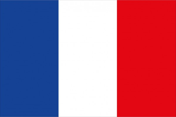 Französische Flagge 20x30cm