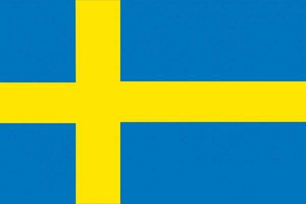 Schwedische Flagge 20x30cm