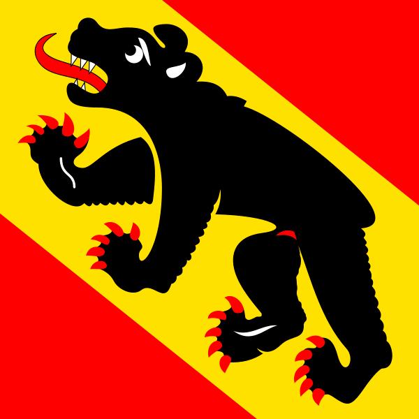 Bern Flagge 20x30cm